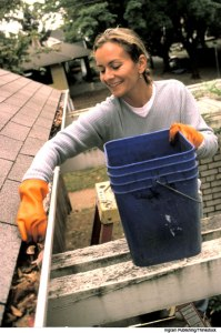 Clean leaves and debris from gutters to allow water to flow freely.